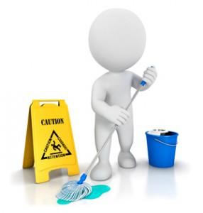 Çalışan Kadının Temizlik Problemi