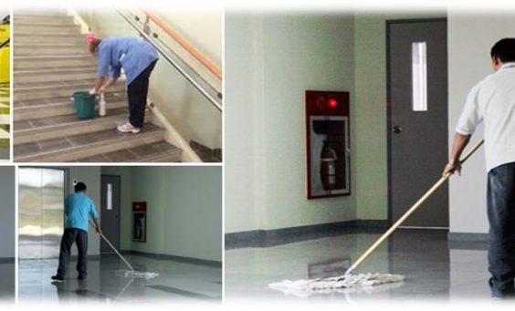 Diyarbakır Ergani Temizlik Şirketi