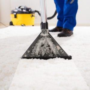 Halı bakımı ve temizliği